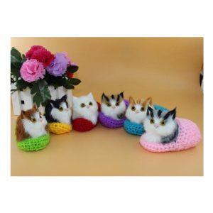 mèo mini