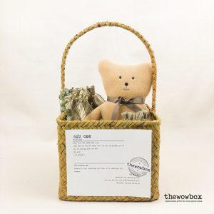 [Quà tặng bé] THE BALANCE BOX LIMITED – Set 2 bộ đồ chơi xếp gỗ cân bằng kèm gấu bông xinh xắn